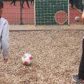 Fussballfest-Torwand